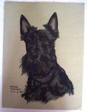 """Precioso 591ms Estampado de una """"Terrier Escocés"""" por """"Gladys Emerson Cook """""""