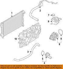 FORD OEM-Engine Coolant Thermostat CJ5Z8575A