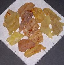 """AMBER Copal 1 1/2-2 1/2"""" semi-tumbled natural, 3 oz bulk stones, Columbia golden"""