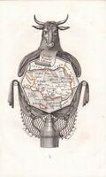 Carte géographique XIXe Département Morbihan Bretagne  Mor-Bihan Vache 1824