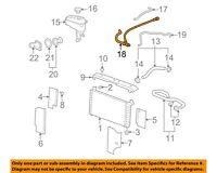 GM OEM Radiator-Outlet Lower Hose 15834773