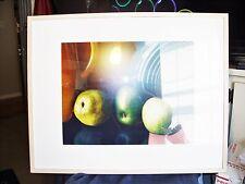 Pencil Signed & Framed Art Lithograph (Still Life w/Apples) Claudia O'Neily EUC