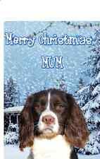 English Springer Spaniel  PIDXM59 A5 Xmas Greeting Card Personalised Mum Dad son