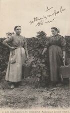 """*Foreign Postcard-""""Two Ladies...Harvest in Touraine...Red Grape Harvesters"""""""