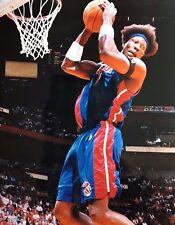 Detroit Pistons Ben Wallace Rebound Photograph 11 x 14