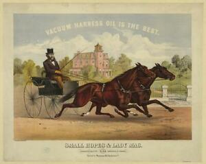 Photo:Small Hopes & Lady Mac,Horses,Vacuum Harness Oil,Horse Racing,c1878 1986