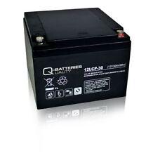 Q-Battery 30-12 12 V 30ah m5 Port l166xb175xh125 mm Bleiakku AGM technique