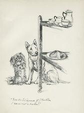 BULL TERRIER AND PEKINGESE LOVELY OLD IMAGE1930'S DOG ART PRINT by VERNON STOKES