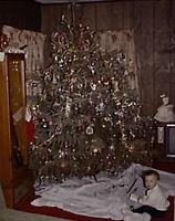 Vintage Photo Slide 1974 Baby Christmas Tree