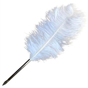 NEW WHITE FEATHER QUILL PEN FOUNTAIN STATIONARY GIFT WRITING OPTIONAL INK BOTTLE