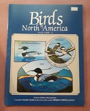Birds of North America Vol I by Brian McMillan - Stained Glass Pattern