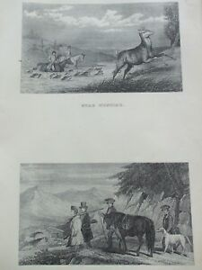 ANTIQUE PRINT C1800'S STAG HUNTING DEER STALKERS GOING OUT ENGRAVING SPORT ART