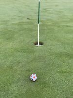 Truvis Golf Ball Style Stencil