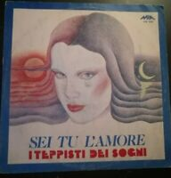 SEI TU L'AMORE- I TEPPISTI DEI SOGNI*ANNO 1979-DISCO VINILE 33 GIRI* N.75