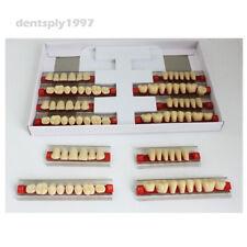 28pcs/set Acrylic Resin Denture Teeth A2/A3 Shade 503# Upper Lower