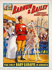 1916 Barnum Bailey Baby Giraffe Vintage Circus Advertisement Art Poster