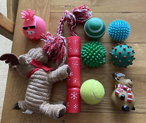 Selection of 10 dog toys for small, medium dog.