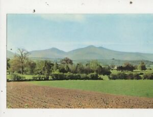 Brecon Beacons From Bishops Meadow Motel Postcard 619a
