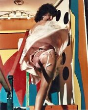 Org Amateur Semi Nude Large (8 x 10) Photo- Funhouse- Butt- Stockings- Skirt- #9