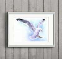 Seagull Bird Coast Watercolour PRINT of original painting signed by artist a4 a3