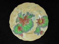 BEAUTIFUL ROYAL DOULTON SERIES WARE PLATE WATER LILY D6343 FIRST QUALITY