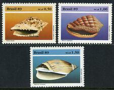 Brazil 2205-2207, MNH. Wildlife Conservation.Conchs endemic Brazilian Coast,1989