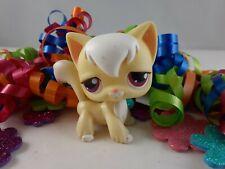 Littlest Pet Shop Yellow and White Angora Long Hair Cat #364