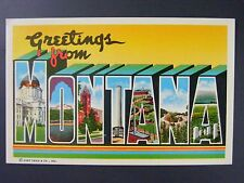 Greetings From Montana Large Letter Vintage Curt Teich Postcard 1965