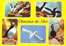 France Oiseaux de Mer, Pingouins Goeland Macareux Moine Cormoran