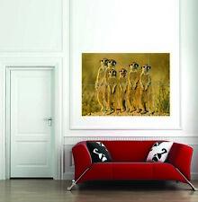 Suricate Meerkat Family Mongoose Giant Wall Art Print Home Decor Poster