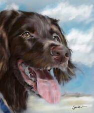 Print Boykin Spaniel Summer Beach Colorful Dog Lover Art Painting Mary Sparrow