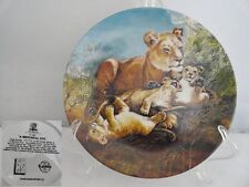 A Watchful Eye Lion Wildlife Society Porcelain Collector Plate