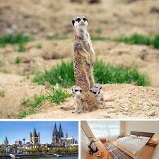 2 Tage Köln Familienurlaub mit Zoo 4★ Mercure Hotel Köln Städtereise Kurzurlaub
