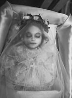 Antique Post Mortem Child Casket Photo 219b Odd Strange & Bizarre