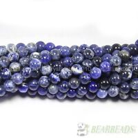 "Natural Sodalite Jasper Gemstone Round Beads 4mm 6mm 8mm 10mm 12mm 14mm 15.5"""