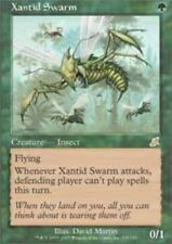[1x] Xantid Swarm [x1] Scourge Near Mint, English -BFG- MTG Magic