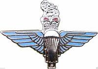 Para Regiment Metal Pin Enamel Badge Military Maroon Beret Kings Crown Badges