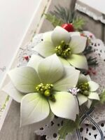 poinsettia **FREE UK POSTAGE** 6 x Die cuts We wish you a merry christmas