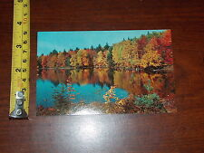 POSTCARD OLD VINTAGE NATURE SHOW