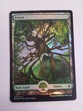 Forest 273/274 - FOIL - Battle For Zendikar (Magic/mtg) Full Art Land