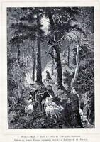 Foresta di Cantalupo.San Pietro Avellana.Isernia.Stampa Antica.Passepartout.1888