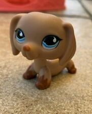 Authentic LPS #518 brown dachshund blue eyes
