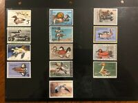 Nice Mint Duck Stamp Collection (RW42-53, 55) 13 Mint Never Hinged Duck Stamps!