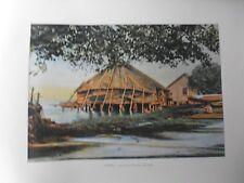 iles sous le vent/Gravure 19°in folio couleur/Une case Lacustre a Raiatéa