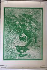 Tweet Vintage Black Light Poster Wilfred Satty Celestial Arts Psychedelic Bird