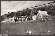 Postcard Scargill near Barnard Castle Durham RP by Wood