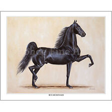 New listing Rex Mcdonald - famous American Saddlebred Horse equine Art painting
