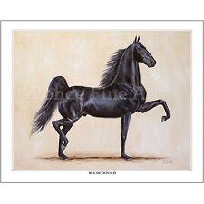 Rex Mcdonald - famous American Saddlebred Horse equine Art painting