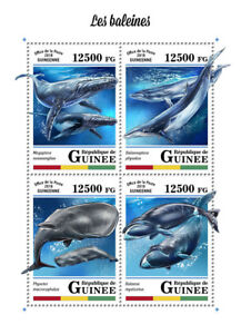 Guinea 2018 MNH Whales Whale 4v M/S Marine Mammals Animals Stamps