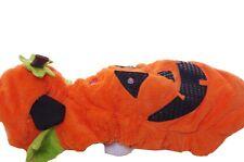 Dog Animal Pet Orange Light Up Pumpkin Halloween Costume Cute Funny Large NEW